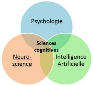 sciencescognitives